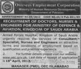 Consultant For Overseas Jobs