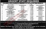 Images of Procurement Consultant Jobs