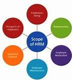 What Is Human Resource Management Images