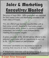 Marketing Sales Jobs