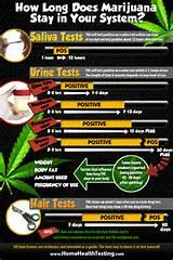 Images of Does Marijuana Stay In Your System